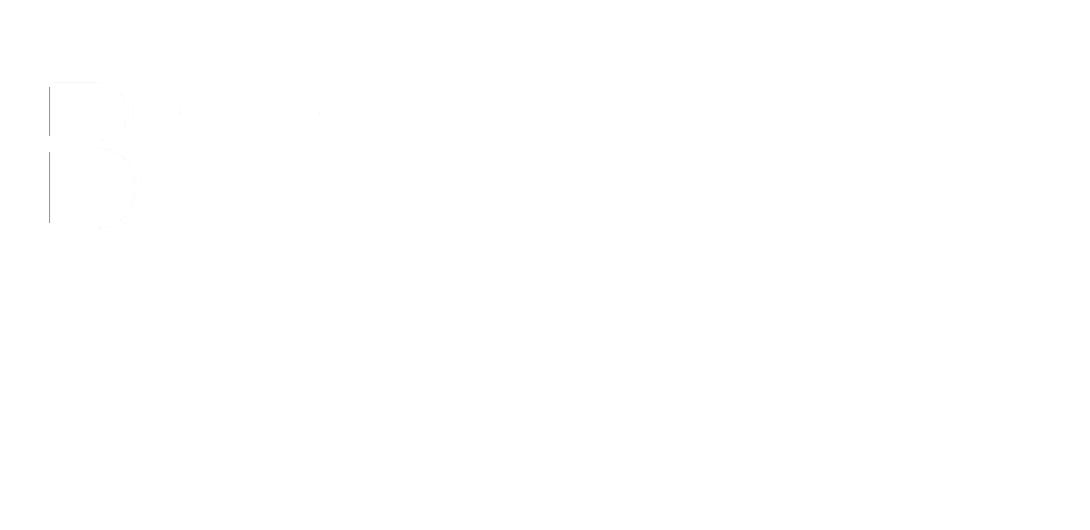 BSS Auto Parts